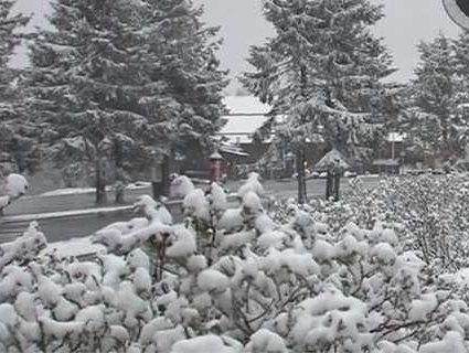 Німеччину засипало снігом (відео)