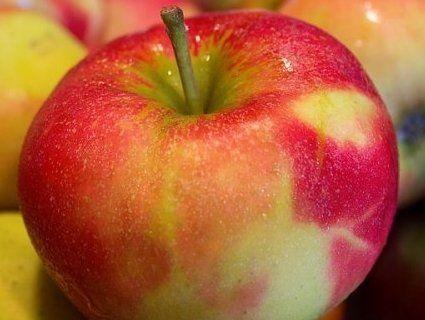 Які хвороби допоможе подолати одне яблуко в день