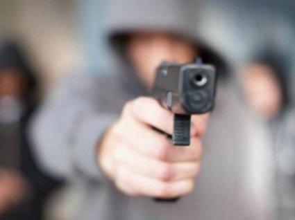 Підліток застрелив сусіда, гуси якого заважали гнати корову