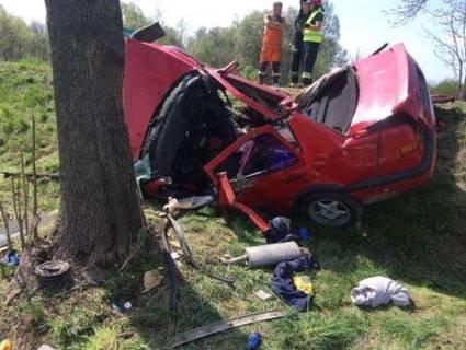 Авто перебило об дерево: в ДТП у Польщі загинув українець (фото)