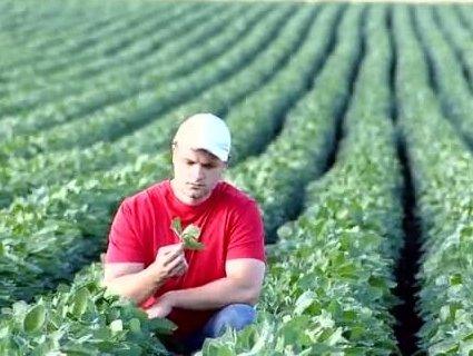 Підсоблять: на Рівненщині молоді фермери можуть отримати 40 тисяч гривень