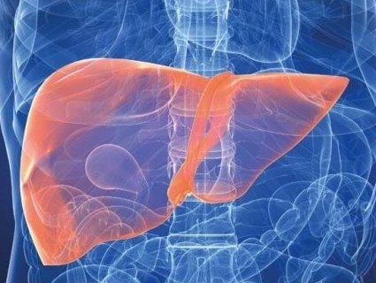 Які симптоми вказують на хвороби печінки