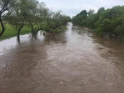 «Вийшов глянути на річку»: на Закарпатті розшукують школяра, якого понесло водою