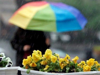 Вихідні дні «потішать» українців дощовою погодою