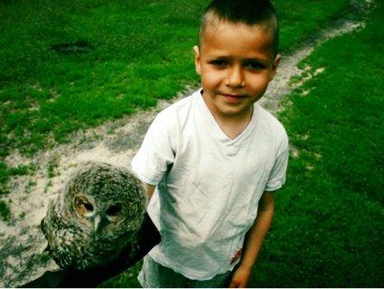«Гаррі Поттер і Букля»: дошкільник із Полісся приручив сову (фото)