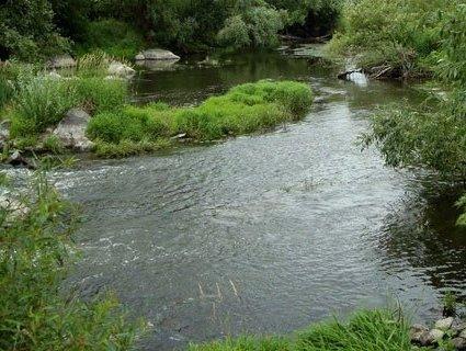 Через ДТП у річку Рось вилилися отрутохімікати