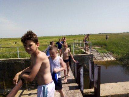 «Тут купаються діти»: у селі на Волині річку отруїли купою курячого посліду (фото)