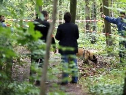 «Пані» вирішила «проблему»: у Польщі тіло заробітчанина-українця викинули в ліс (фото 18+)