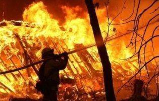 НП на Волині: розмінування, пожежі і не тільки