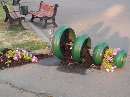 На проспекті Волі в Луцьку понищили квітники (фото)