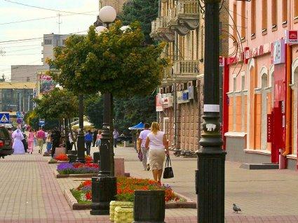 Б'ють на сполох: на проспекті Волі в Луцьку хочуть вирубати дерева