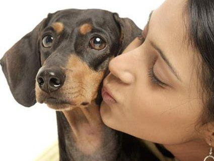 Домашні улюбленці: американці цілують собак частіше, ніж партнерів