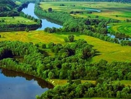 Кліматичні зміни: в Україні зникає Полісся