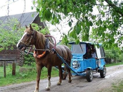 У селі на Волині «маленьких принців і принцес» возять у садок… каретою (фото)