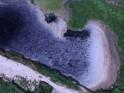 «Тухлі ріки, фекальні береги»: сморідні поля фільтрації під Луцьком показали з висоти (відео)