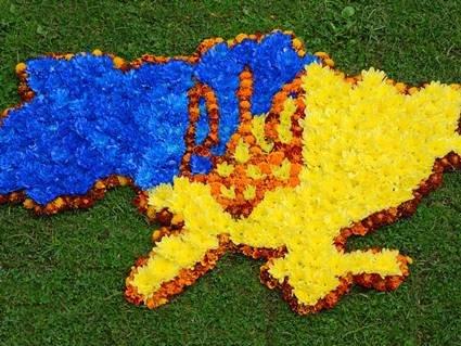В яких областях України найактивніші виборці, а хто «пасе задніх»