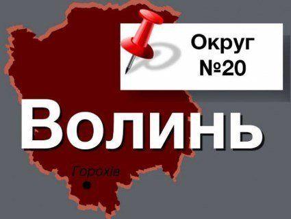 Хто стане нардепом від Горохівського виборчого округу №20