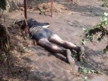 Під Одесою прорвало дамбу: вода вбила чоловіка та знесла авто з людьми