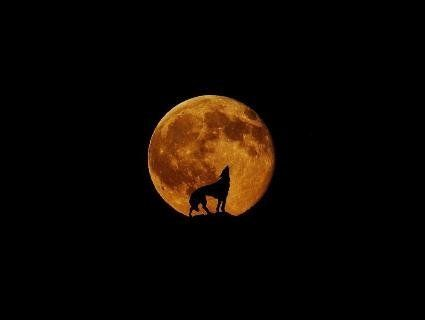 Повня з 15 на 16 серпня: як «осетровий» місяць вплине на кожного з нас