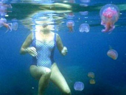 Не море, а «суп із галушками»: показали кадри з Херсонщини, де кишить медузами (відео)