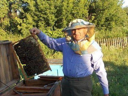 У серпні пасічники готують сироп для бджіл