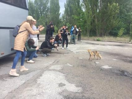 «Атомна екзотика»: Чорнобиль побив туристичний рекорд