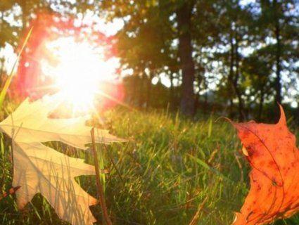 Бабине літо йде до завершення: синоптик дала прогноз