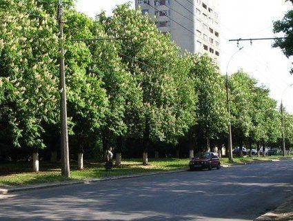 Жукова у відставку: суд скасував рішення місцевої влади Харкова про перейменування проспекту