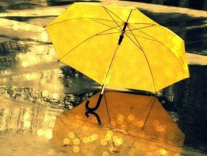 Кліматична осінь: коли чекати похолодань і дощів
