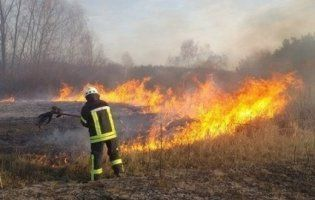 На Київщині  через спалах сухостою загинуло двоє людей