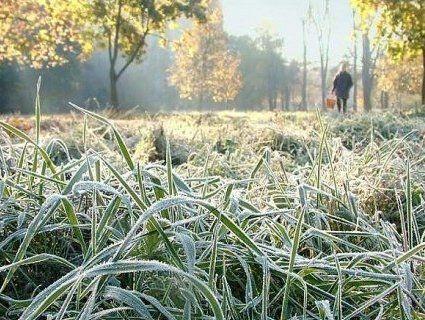 На територію України насуваються заморозки