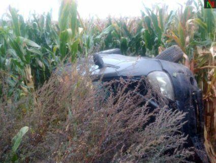 На Волині «бляхар» задрімав за кермом і прокинувся в полі кукурудзи (фото)