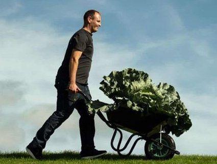 Майже 300-кілограмовий гарбуз і метровий огірок: фермери мірялись овочами (фото)