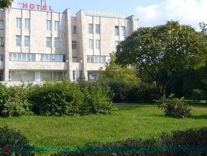 Замість забудови: у Луцьку з'явиться сквер з унікальними деревами