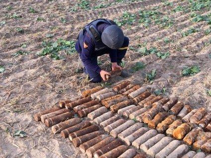 «Мінне поле»: на городі у волинському селі викопали півтисячі снарядів (фото)