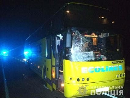 На трасі Київ – Ягодин автобус з іноземцями вбив людину (фото)