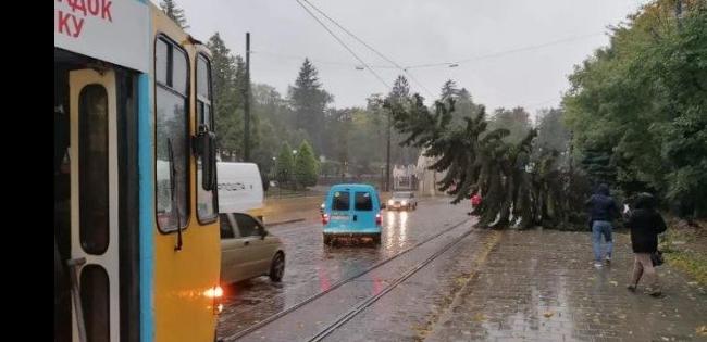 Львовом пронісся ураган (фото, відео)