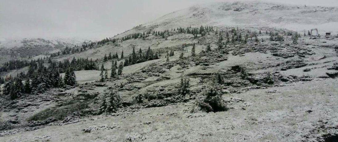 Карпати засипало снігом. ФОТО. ВДЕО