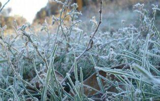 В Україні оголосили штормове попередження через заморозки