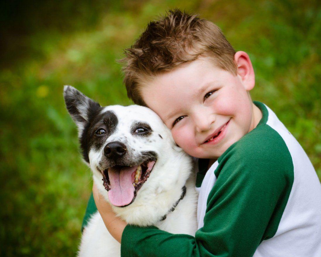 Собаки лікують навіть там, де медикаменти не діють