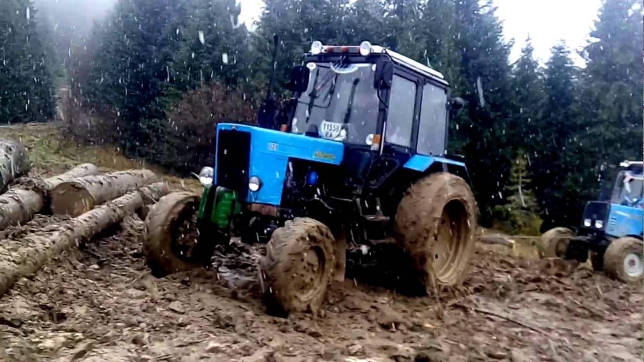 На Рівненщині «повсталі лісоруби» викрали конфіскований трактор з-під арешту