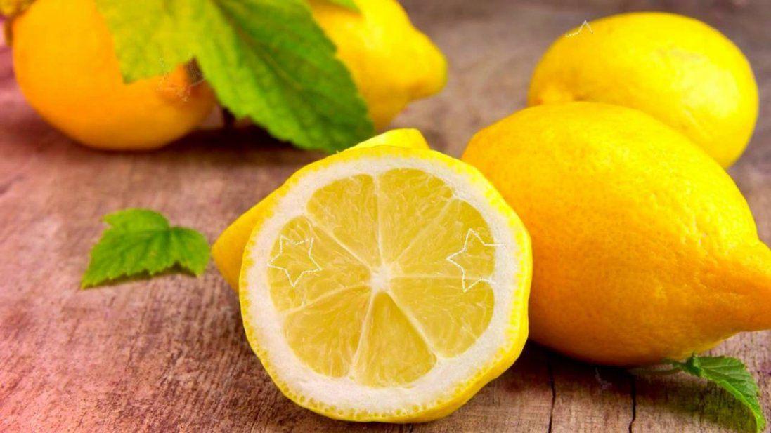 Реакція песика на лимон розсмішила мережу (відео)