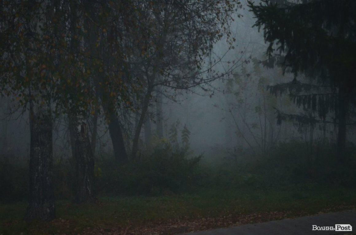 Майже Твін Пікс: туман у луцькому парку (фото)