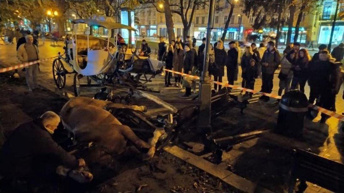 У Львові коні, налякані салютом, знесли лавку з людьми (фото, відео)