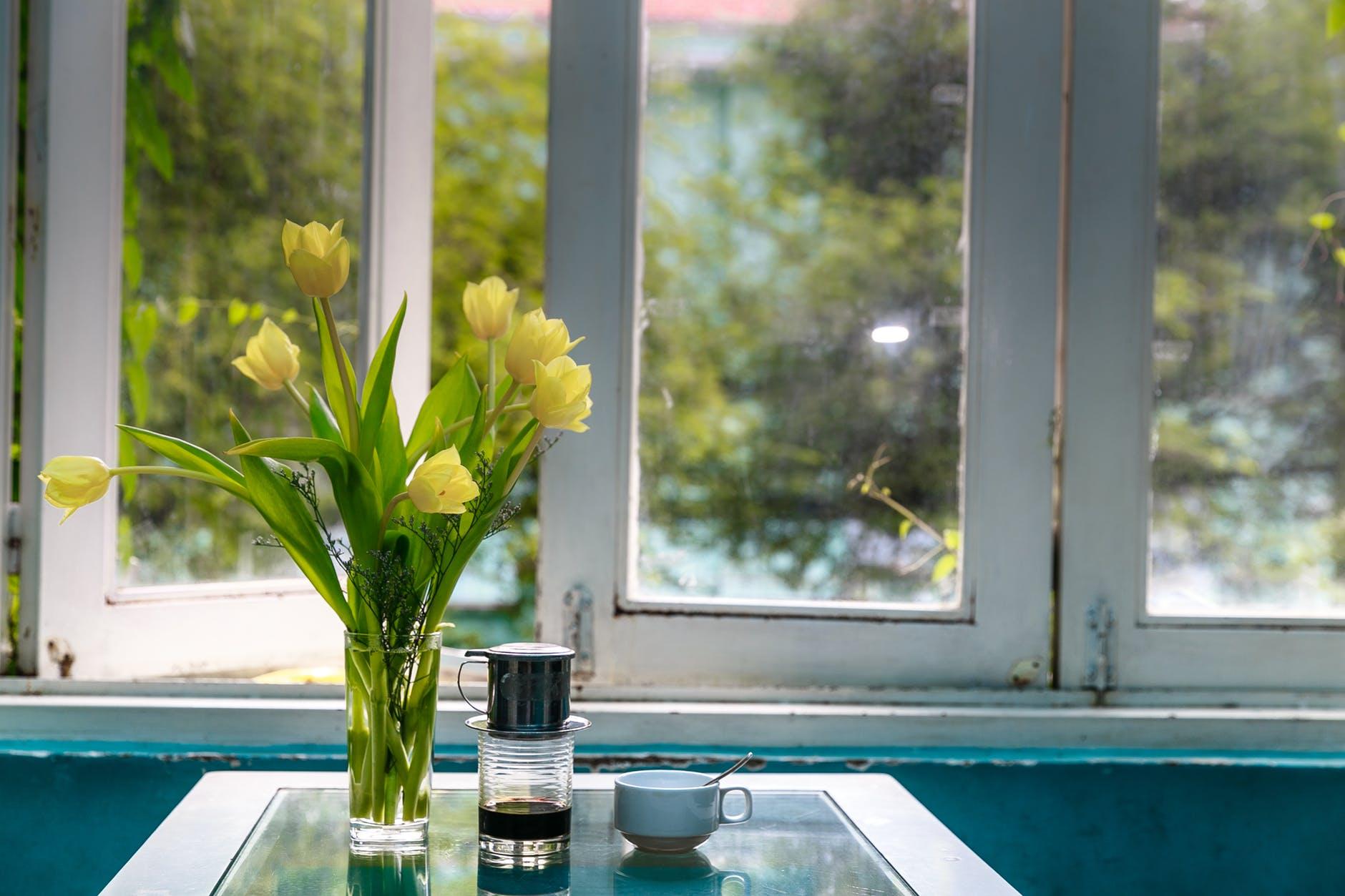 Як продовжити життя квітів у вазі: не жалійте води, підгодовуйте мінералкою та обрізайте стебла