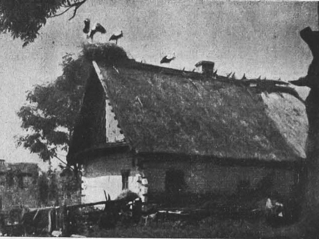 Унікальні фото волинського села в 1939 році