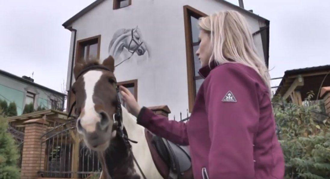 Як кобила врятувала здоров'я дівчині в Луцьку (відео)
