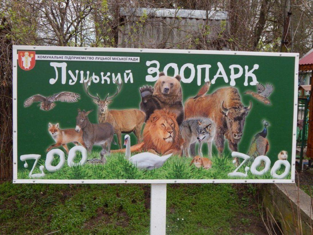 Як мультимільйонер прибирає вольєри в Луцькому зоопарку (фото)