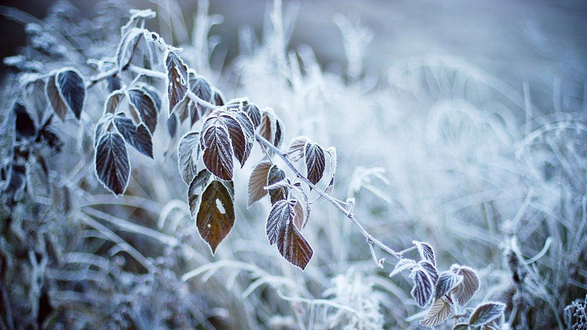 До мінус 12° – в Україну іде похолодання