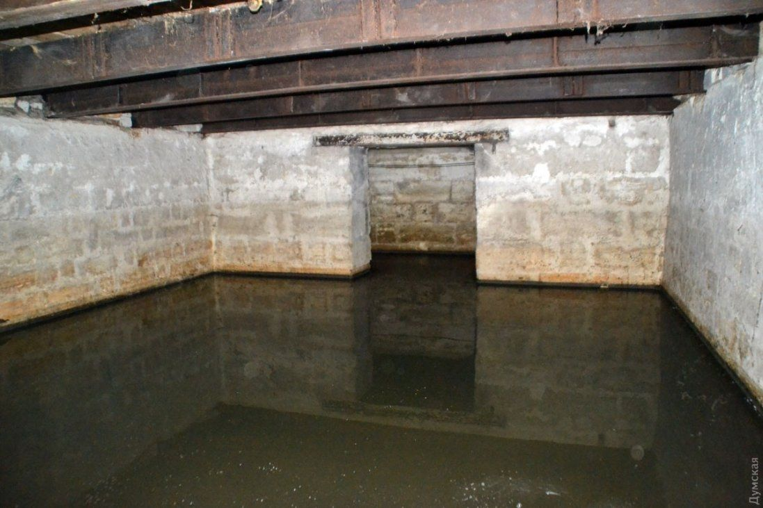 Затопило підвал будинку в Луцьку – мешканці лишилися без запасів на зиму (відео)